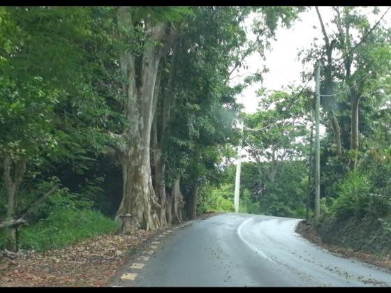 Fahrt an der Ostküste Mauritius