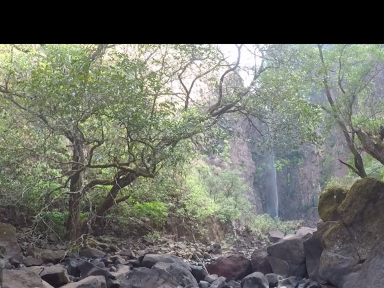 Goa im Januar 2020 - 17