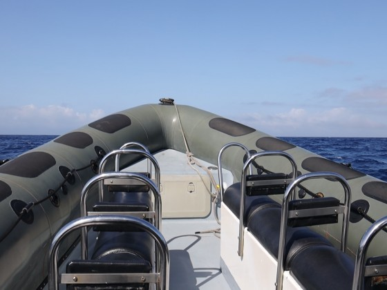 Hoch und runter - auf dem Boot von Espaço Talassa