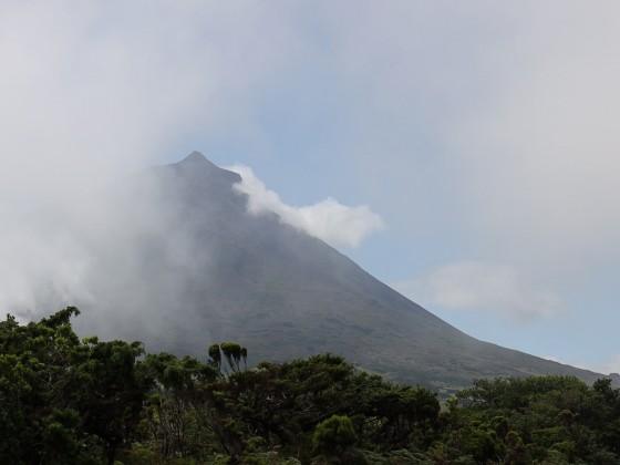 Der Berg Pico im Nebel