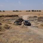 Fahrt durch die Masai Mara