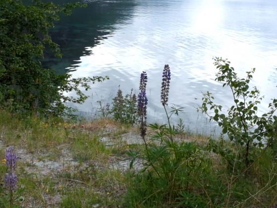 Norwegen 2018 - Innfjorden